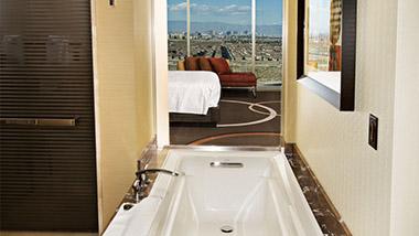 Bathroom Shot in Classic One Bedroom Suite